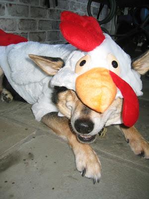 I like my costume!