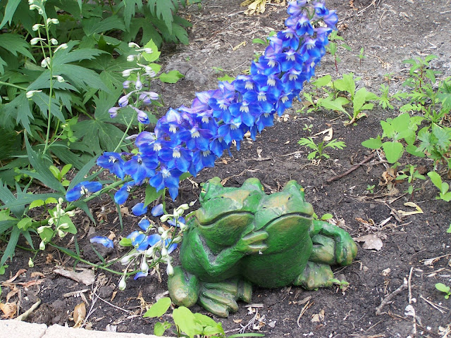 Frog Decor in perennial garden