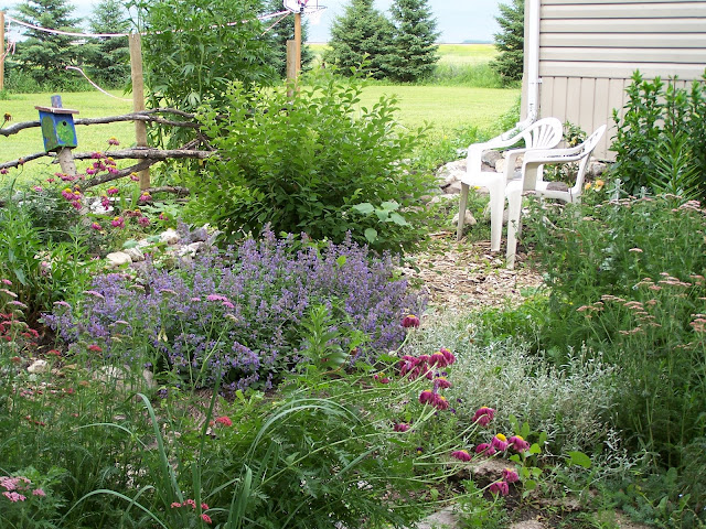 Lawn chairs, fence, and birdhouse in perennial garden
