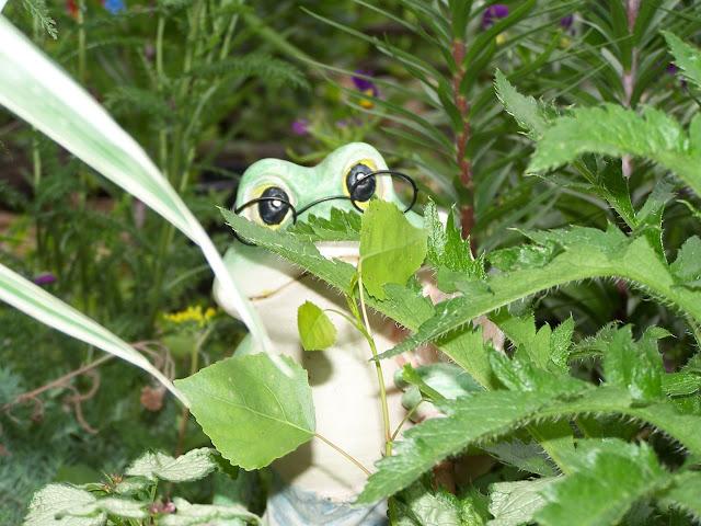 Frog garden decor