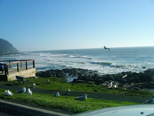 Destination Yachats