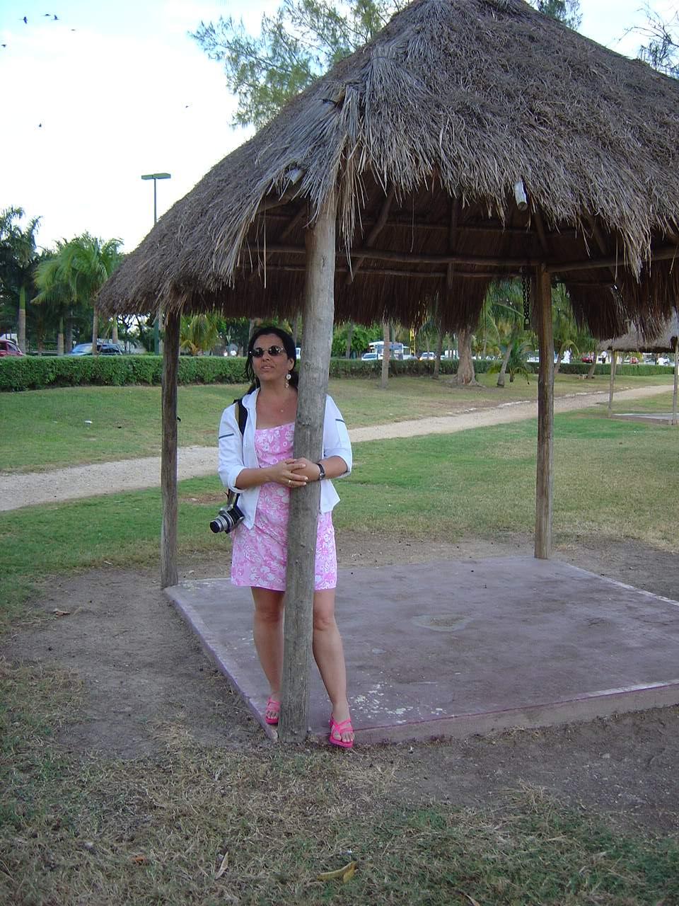 [038-México,+Cancun,+Boulevard+Kukulkan,+Liza+junto+Ã]