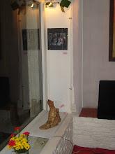 Vista parcial sala A