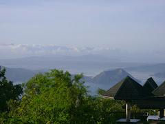 Tagaytay Grove
