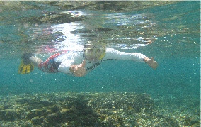 Image of Peter snorkeling and waving to the camera under the water around Lady Elliot Island