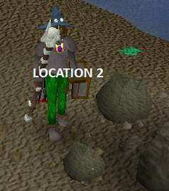 Obby mauler training besides rock crabs