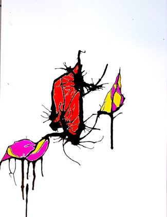 vleermuis