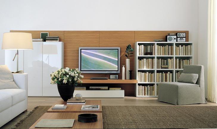Home Christmas Decoration: TV Panel Design / LCD Mounts