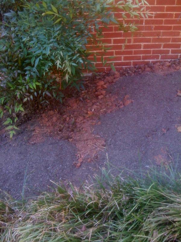 Nature S Helper Mushroom Compost