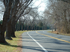The road to Assateague