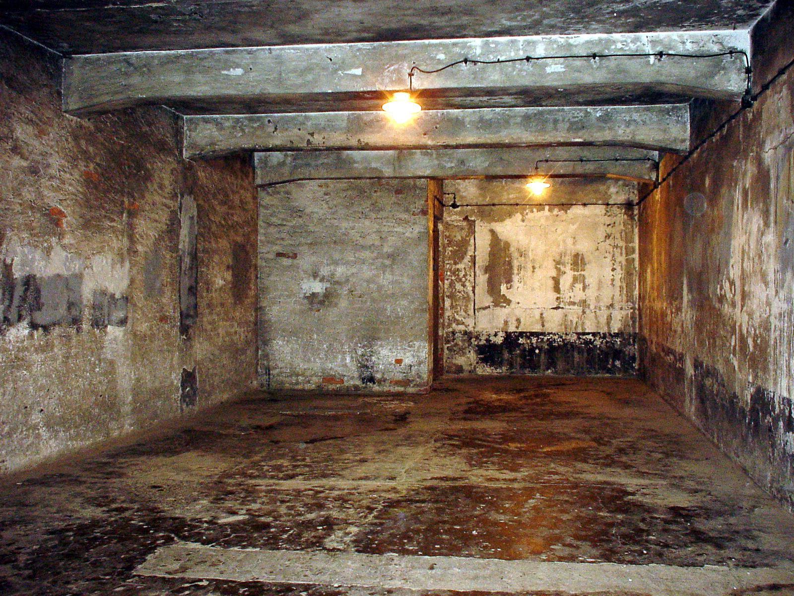 Image result for camara de gas auschwitz