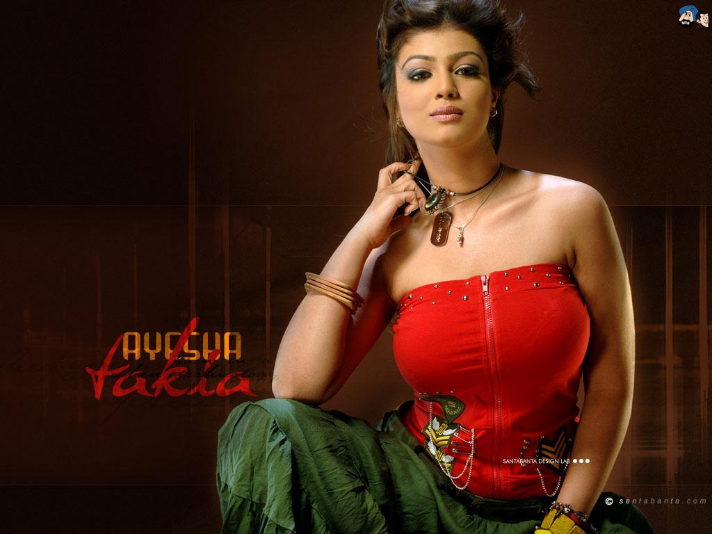 Bollywood Artis Movies Wallpapers Ayesha Takia Wallpapers -9964