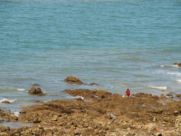 Vung Tau: Kota Pantai Damai Rumah Baru Saya
