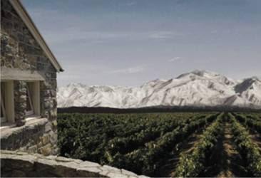 Santa+Maria+de+los+Andes - >Que tal um vinhedo próprio de frente para a Cordilheira dos Andes?