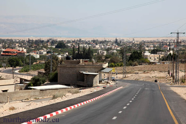 اسرائيل في صور