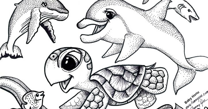 Origami N Stuff 4 Kids Coloring Baby Honu And Friends