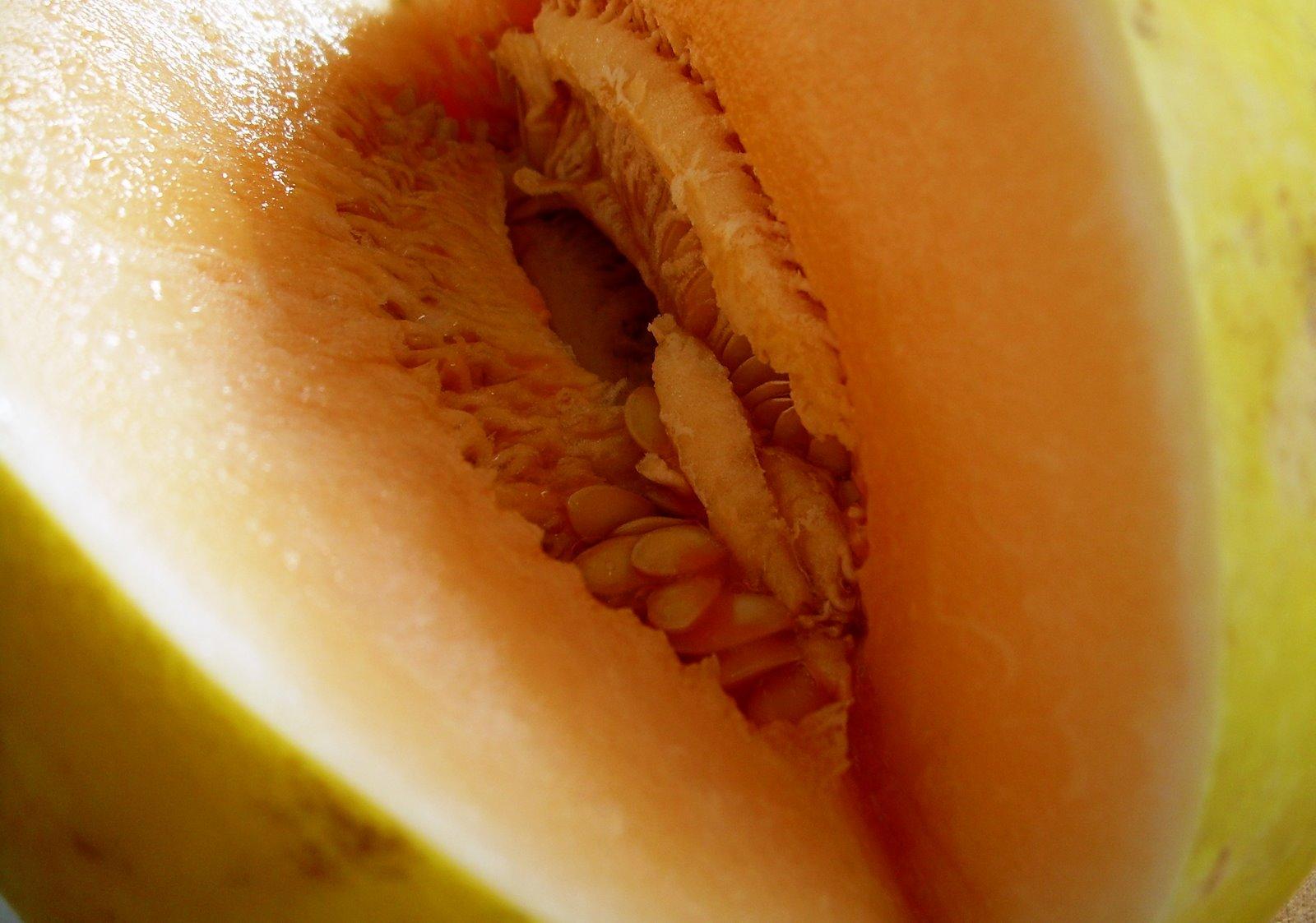[melons+014.jpg]