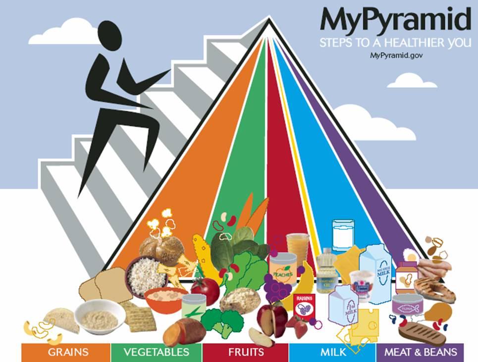 [foodpyramid.jpg]