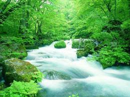 Да запазим природата!