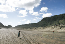 Bethells Beach, NZ