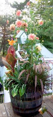 Perennial Passion Whiskey Barrel Planter Comparisons Amp Flower Veggie Bouquet