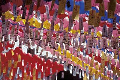 韓國旅遊 韓國遊學30