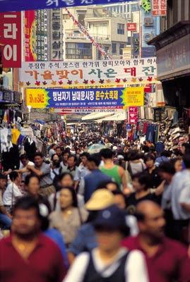 韓國旅遊 韓國遊學24