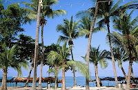 泰國,泰國航空,泰國旅遊,泰國曼谷,泰國簽證,泰國旅行社,泰國導遊,泰國航空公司,泰國潑水節,泰國觀光局63