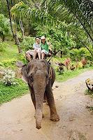 泰國,泰國航空,泰國旅遊,泰國曼谷,泰國簽證,泰國旅行社,泰國導遊,泰國航空公司,泰國潑水節,泰國觀光局72