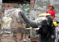 泰國潑水節,泰國曼谷潑水節,潑水節,泰國旅遊,泰國曼谷旅遊,曼谷旅遊2