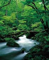 日本旅遊,日本旅遊局,日本旅遊活動,日本旅遊地圖,日本旅遊討論區,日本旅遊網,日本旅遊注意事項,日本旅遊討論,日本旅遊須知,日本旅遊會話,日本旅遊指南1