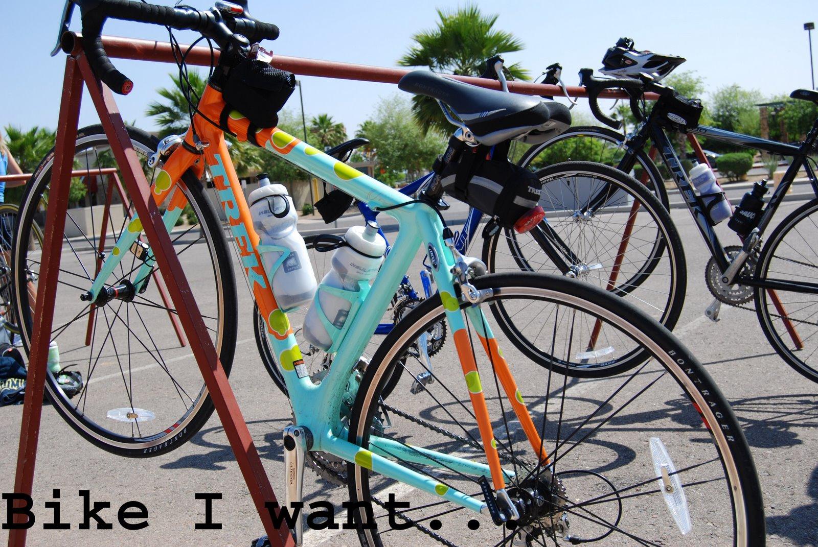 [polkadotbike.jpg]