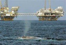 El barril del petróleo baja 5 dólares hoy para cerrar a 129 dólares en Nueva York