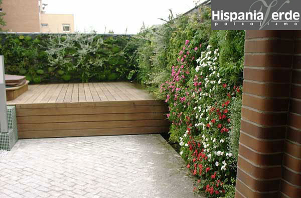 Mendoza decora un jardin vertical en casa - Jardin vertical en casa ...