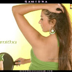 Actress Namitha Gallery   Part A