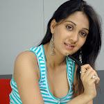 South Indian Actress Ankitha Photos