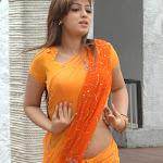 South Indian Actress Sizzling Beauties