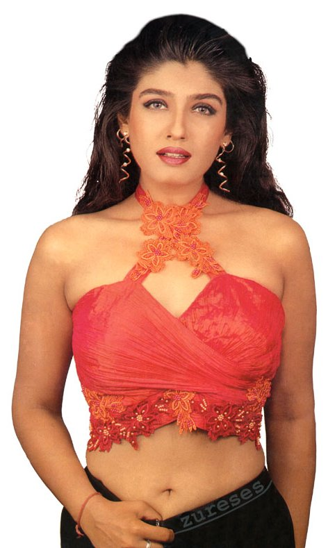 Telugu Cinema News Raveena Tandon Hot Celebrity Photos-2846
