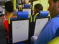 pintos no bus