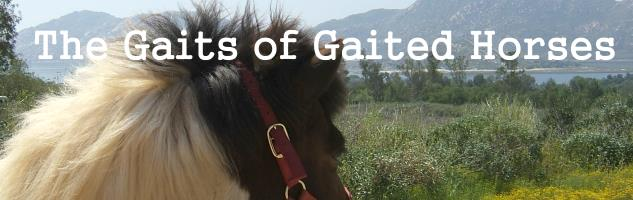 Gaits of Gaited Horses
