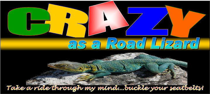 Crazy As A Road Lizard