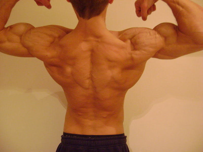 Martin Berkhan — Back Picture — Flexing