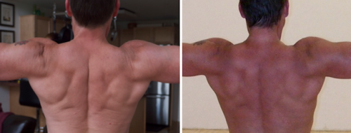 Richard Nikoley — Before and After Leangains Pictures