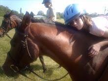 My Equestrian