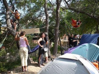 Denuncien a 7 malgratencs per la seva participació en les protestes contra la tala d'arbres a Can Feliciano.