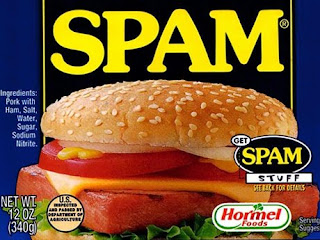 SPAM, Wordpress, Plugin