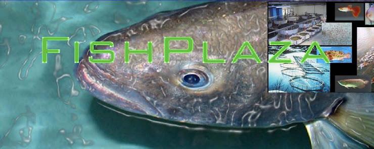 FishPlaza & Ternakan akuakultur