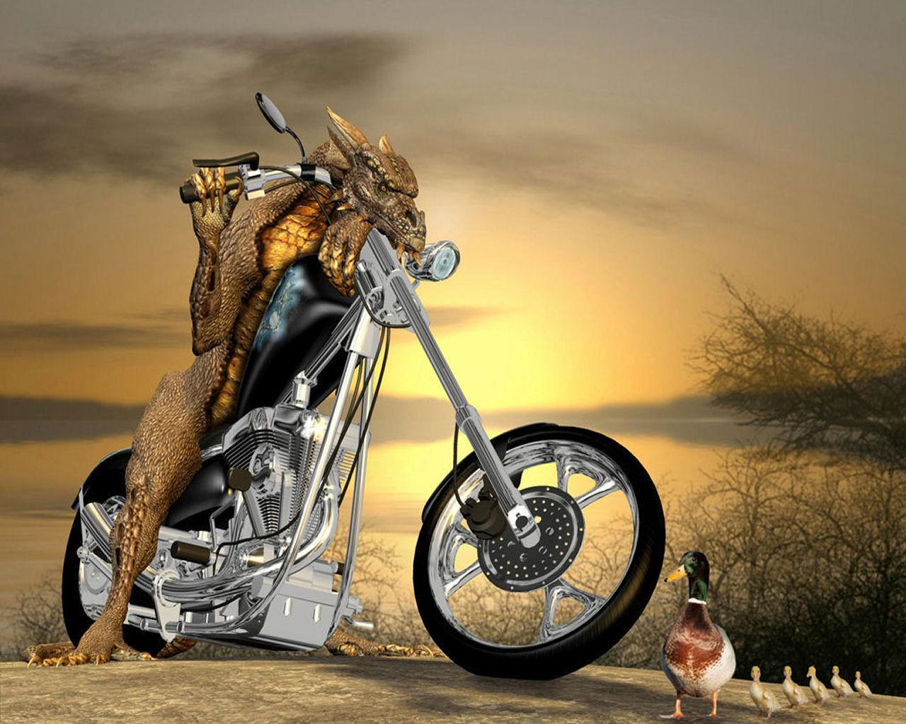 New Wallpapers Collection | Desktop Wallpapers | Mobile Wallpapers: Download Funny Wallpapers ...