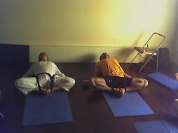 Conhecendo Iyengar Yoga