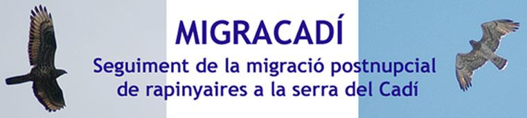 Migracadí